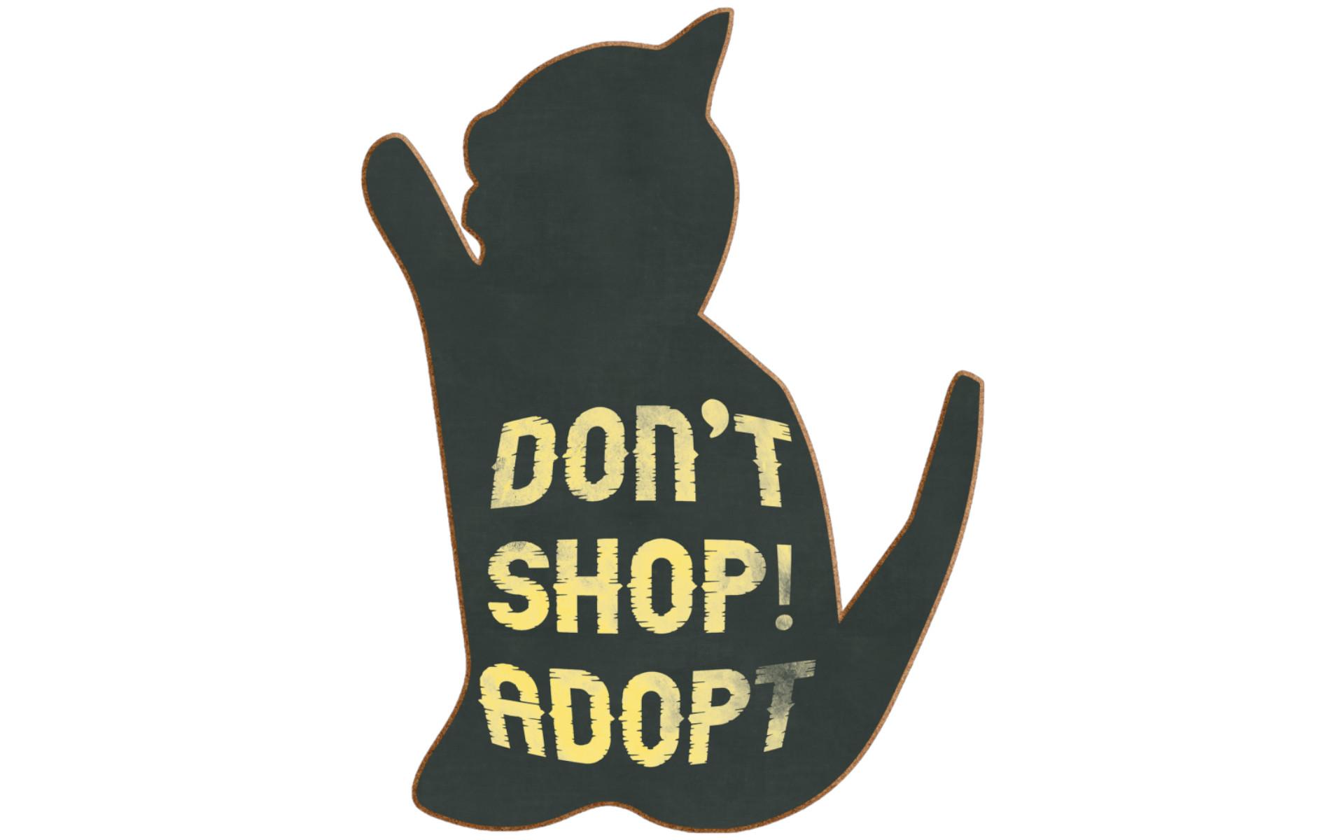 Tierschutz Beitrag Tierschutzorganisation oder Züchter 2